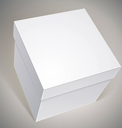 Blank box template for your package design put vector