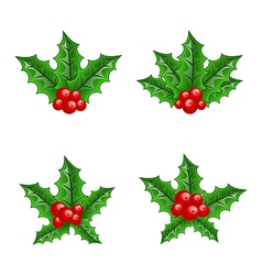 Christmas set holly berry branches vector