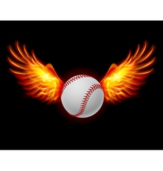Baseball fiery wings vector