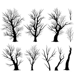 Creepy tree vector