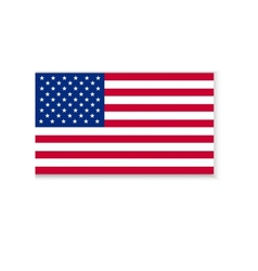 Flag of america vector