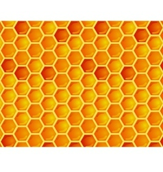 Seamless pattern of honeycomb vector