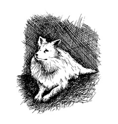 Dog in anddrawn engraving style by pen retro hound vector