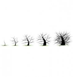 Life growth stages vector