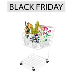 Flower and orchid in black friday shopping cart vector