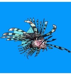 Cartoon scorpion fish sea ruff vector