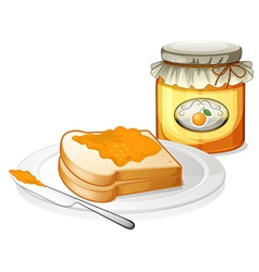 A sandwich in a plate with an orange jam vector