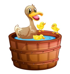 Ducks taking a bath at the bathtub vector