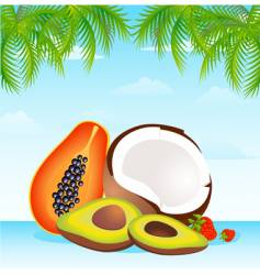 Island fruit vector