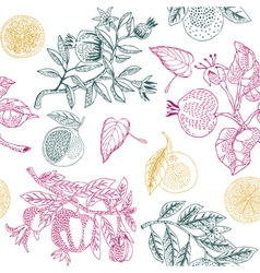 Nature lemon print vector