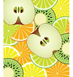 Slices of citrus kiwi and apple vector