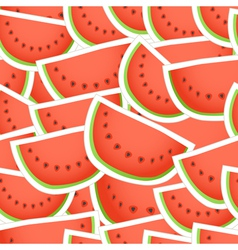 Red water melon seamless background vector