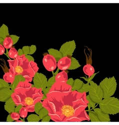 Floral background with wild rose brier vector