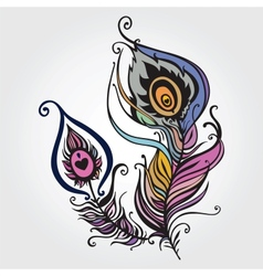 Beautiful peacock feather vector