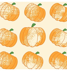 Pumpkin background vector