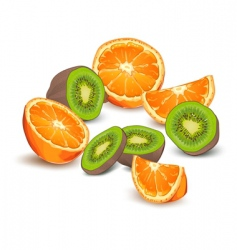 Orange and kiwi fruit vector