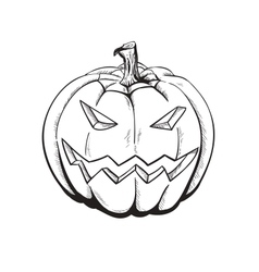Sketch pumpkin vector