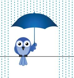 Bird rain vector