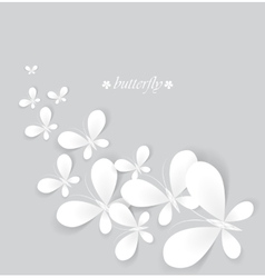 White butterflies vector