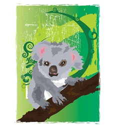 Koala cartoons vector