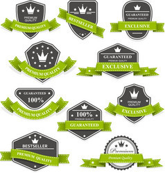 Heraldic medals and emblems with ribbons vector