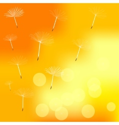 Dandelion on a wind loses the integrity vector