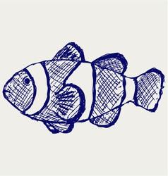 Tropical reef fish vector