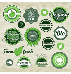 Collection green labels badges and icons vector