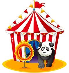 A panda beside the fireball vector