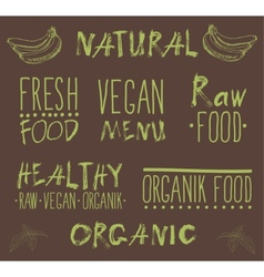 Raw vegan food calligraphy vector