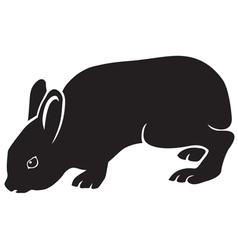 Silhouette of hare vector