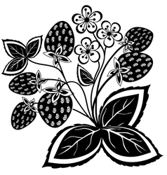 Black and white abstract strawberry vector