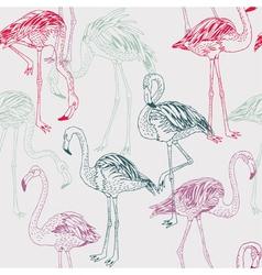 Flamingo drawing vector