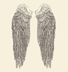 Angel wings  engraved style hand vector