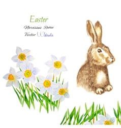 Easter background with rabbit vector