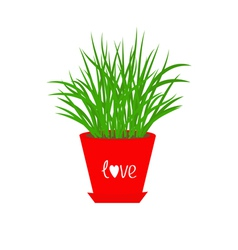 Grass growing in red flower pot icon isolated love vector