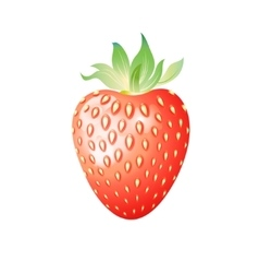 Delicious wild berry strawberry vector
