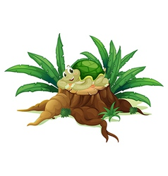 A turtle above a trunk vector
