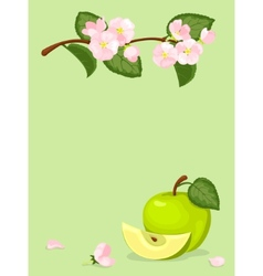 Green apple and flowers card vector