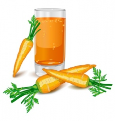 Carrots juice vector