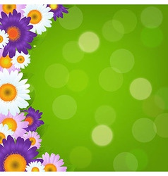 Colorful gerbers flowers frame with green bokeh vector