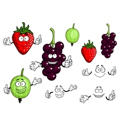 Currants strawberries and gooseberries fruits vector