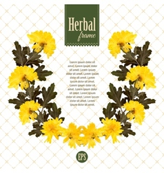 Herbarium wreath of natural yellow flowers vector