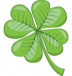 Four leaf clover vector