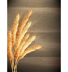 Wheat on wooden background eps 10 vector