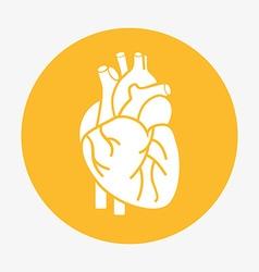 Organ human icon vector