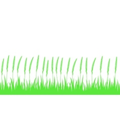 Seamless green grass and ears vector