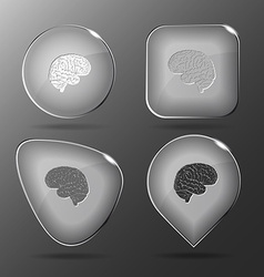 Brain glass buttons vector