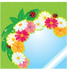 Ladybirds and daisies - summer card vector