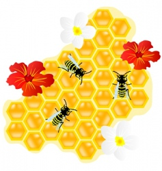 Bees on honeycomb and flowerses vector